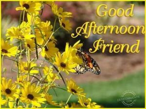 Happy Afternoon Messages For Friends