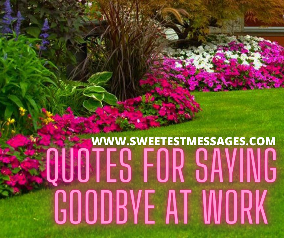 50+ Quotes For Saying Goodbye At Work